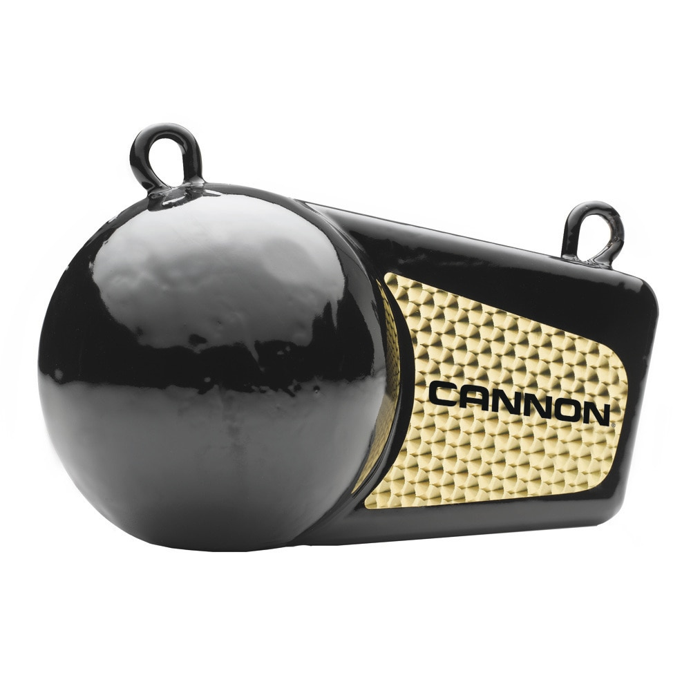 Cannon 10lb Flash Weight - 2295184
